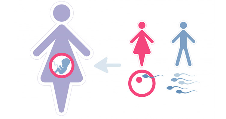 Гестаційне сурогатне материнство